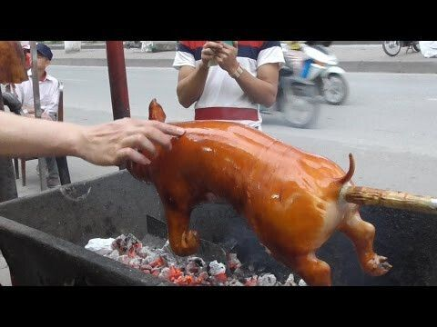 I wanted to keep things simple to give you guy an authentic view of Vietnam Street Food. So I captured Vietnam street food - Crispy Roast BBQ Whole Pig Hog ...